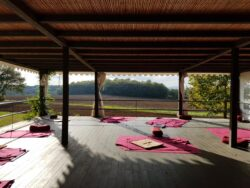 8 - 15 JUNE 2019 - BIVAG Yin master course
